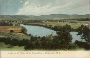 Binghamton NY Valley of the Susquehanna c1905 Postcard