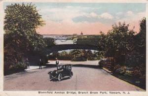 New Jersey Newark Branch Brook Park Bloomfield Avenue Bridge 1921
