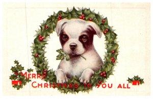 Dog , Merry Christmas