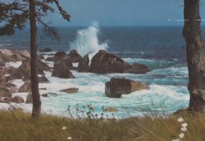 Summerville Coastline NS Canada Canadian Postcard