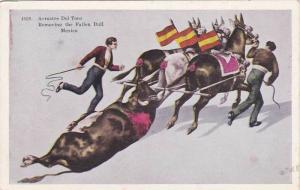 Arrastre Del Toro, Removing the Fallen Bull, Mexico, 00-10s