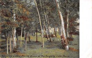Rangeley Lakes Maine~Rangeley Lake House~Birch Grove~Bandstand~1905 Postcard
