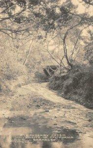 STRAWBERRY CREEK University of California, BERKELEY 1911 Vintage Postcard