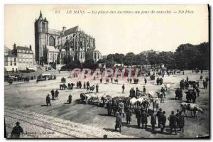Old Postcard Le Mans Place des Jacobins a day's march Cows TOP