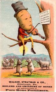 VICTORIAN TRADE CARD, POTATO HEAD.