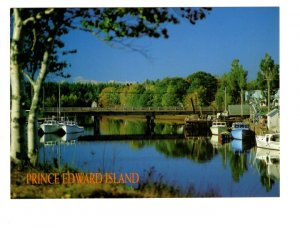 Murray Harbour, Prince Edward Island, Large 5 X 7 Postcard