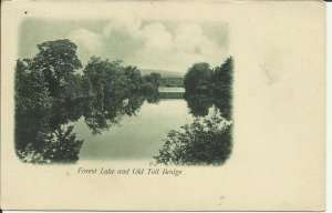 Forest Lake And Old Toll Bridge