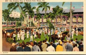 Florida Miami Hialeah Park Walking Ring Curteich