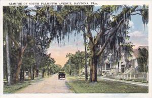 Florida Daytona Glimpse Of South Palmetto Avenue