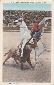 Bull Fight Picador &  Horse Charged By Bull