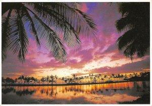 MIN0599 hawaii honolulu sunset anaehoomalu bay kohala coast palmtrees ocean