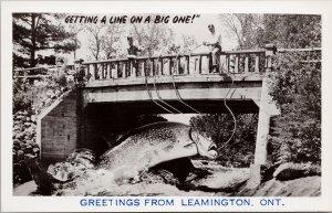 Leamington Ontario Exaggerated Fish Line On A Big One Fishing RPPC Postcard G29