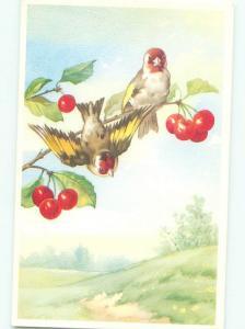 Pre-1980 BIRDS IN THE CHERRY TREE AC7048