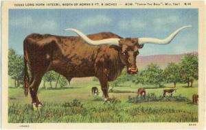 Linen of Texas Long Horn (Steer) Width 9 ft 6 Inches TX