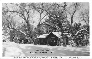 Mount Laguna California~Laguna Mountain Lodge~Winter Oaks~Ladder~1950s RPPC