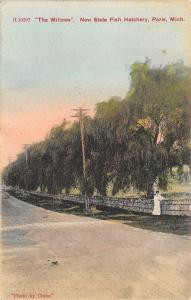 Paris Michigan~Willow Trees~State Fish Hatchery Road~Victorian Lady on Wall~1909
