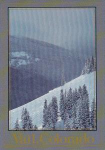 Colorado A Lone Skier Powder Down Vails Back Bowls