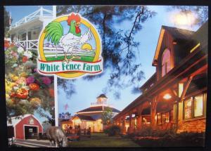 Unused Postcard Lakewood CO White Fence Farm