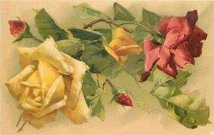 Klein Floral Roses 1907 Artist impression Postcard 21-9450