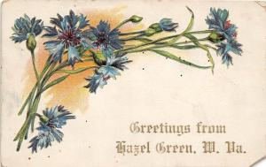B58/ Hazel Green West Virginia WV Postcard 1911 Greetings from Hazel Green
