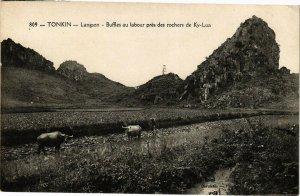 VIETNAM INDOCHINE - Tonkin - Langson - Buffles au labour prés des (190302)