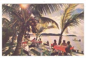 Catamaran Club Hotel , Falmouth Harbor , ANTIGUA , 40-60s