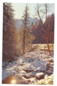 Smoky Mountains National Park TN Winter Scene