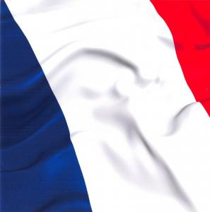 Flag Postcard, French National Flag of France Drapeau Français 5x5 93B