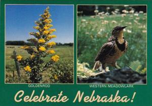 Celebrate Nebraska Omaha Nebraska