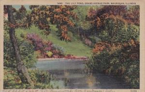 Illinois Waukegan The Lily Pond Grand Avenue Park 1948 Curteich