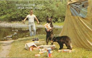 Muskallonge Lake Deer Park Michigan MI bears stealing food from camper Postcard