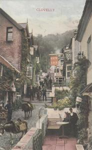 CLOVELLY , England , 1907 ; DONKEYS ON STREET