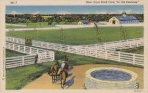 Kentucky Louisville Typical Blue Grass Stock Farm Curteich