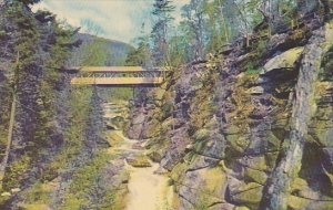 Sentinel Pine Bridge At The Pool Franconia Notch White Mountains New Hamshire