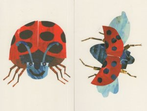 The Bad Tempered Ladybird Eric Carle 2x Art Book Postcard s