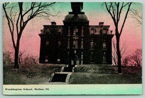 Moline Illinois~Three Terraced Flights Up to Washington School~1912 Postcard