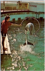 Fort Walton Beach, Florida Postcard GULFARIUM Porpoise World c1960s Unused