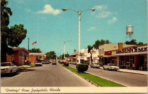 Postcard Greetings Zephyrhills Florida Street View Business Stores Old Car 1512