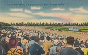 MIAMI, Florida, 1939; On the Home Stretch at Hialeah Park Horse Race Track