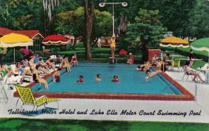 Swimming PooL, Tallahasse Motor Court, Lake Ella Motor Court, TALLAHASSEE, Fl...
