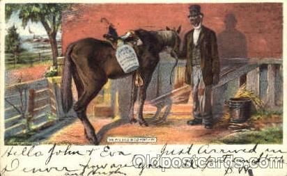 She was bred in Old Kentucky. Black Blacks Postcard Post Card