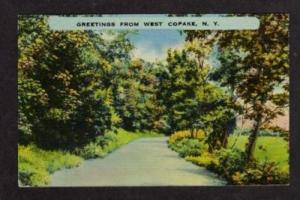 NY Greetings WEST COPAKE NEW YORK Postcard Linen PC