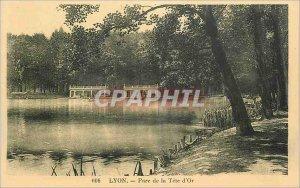 Old Postcard Lyon's Tete d'Or Park