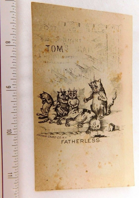 Engraved Fatherless Anthropomorphic Cat Family Dead Cat In Road Oddball Card F48