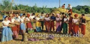Pag Tatahip, Dance Filipino Farmer's Philippine Normal College Philippines Un...