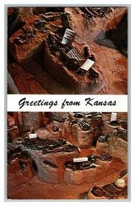 Greetings From Kansas Indian Burials Salina KS Vintage Standard View Postcard
