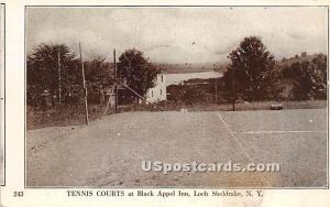 Black Appel Inn Loch Sheldrake NY Unused
