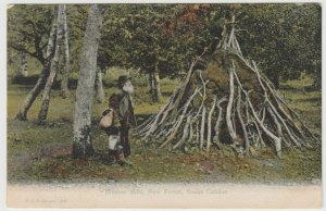 Hampshire; Brusher Mills, New Forest Snake Catcher PPC, Chavey Down PMK 1904