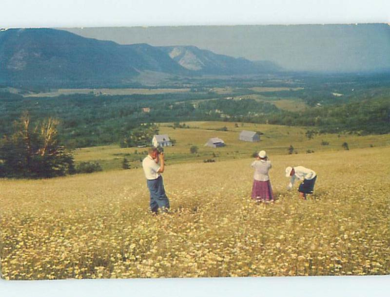 Pre-1980 PANORAMIC Sunrise Valley On Cape North Breton - Near Ingonish NS F9152