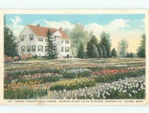 W-Border GEORGE LAWLER TULIP FLOWER GARDEN Tacoma Washington WA E9538